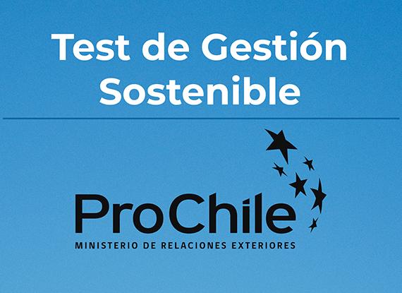 Informe Resultados Test de Gestión Sostenible ProChile